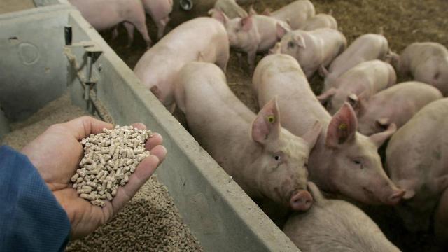 Limiter l'utilisation sur les animaux