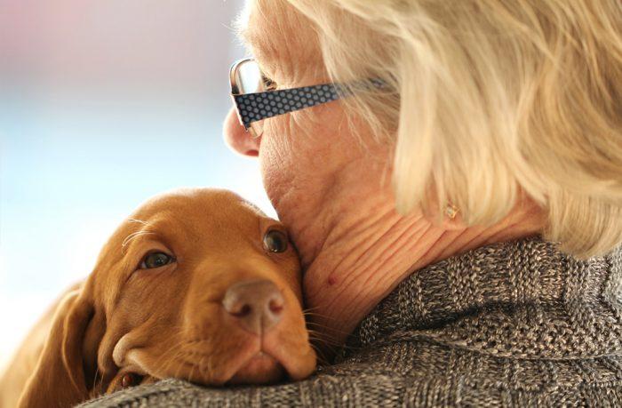 Aide Les Personnes Malades à Guérir Et Les Seniors à Se Sentir Mieux