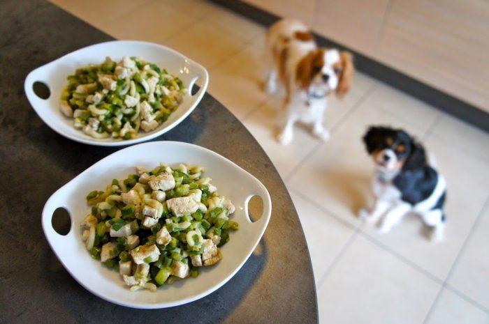 L'alimentation Ménagère